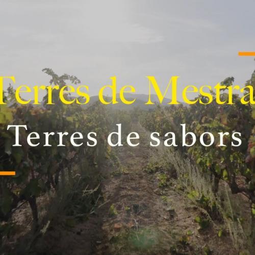 Terres de Mestral, terres de sabors producte local producte proximitat comerç local