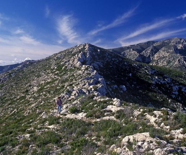 Muntanya de les Terres de Mestral