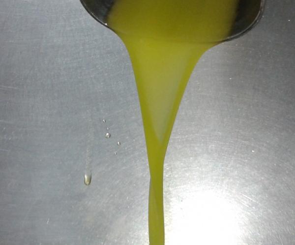El primer raig d'oli