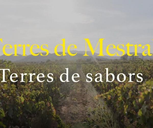 Terres de Mestral, terres de sabors