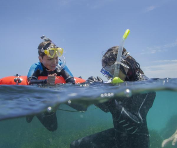 Snorkel Experience In family or friends activity nautical