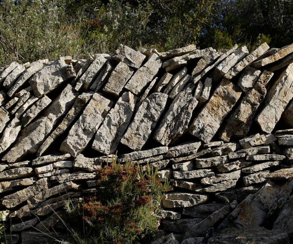 Caminada a les Moles per Natocs i la Roca Rodona