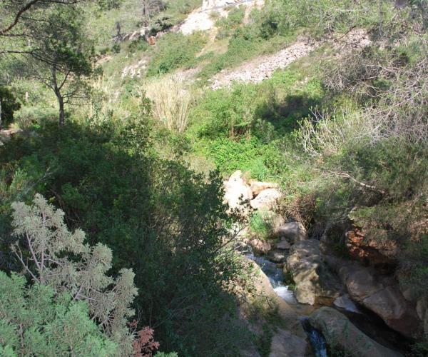 Tomb del Puig del Marquès